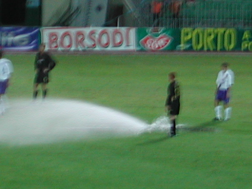 The Sprinkler Disaster
